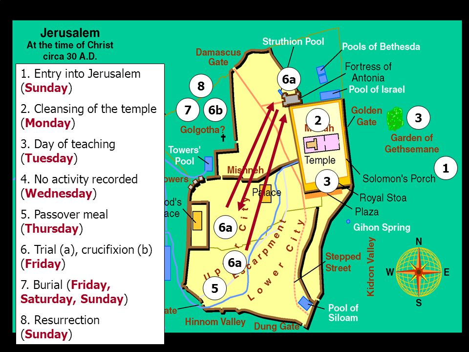 1 1. Entry into Jerusalem (Sunday) 2. Cleansing of the temple (Monday) 3. Day of teaching (Tuesday) 4. No activity recorded (Wednesday) 5. Passover me