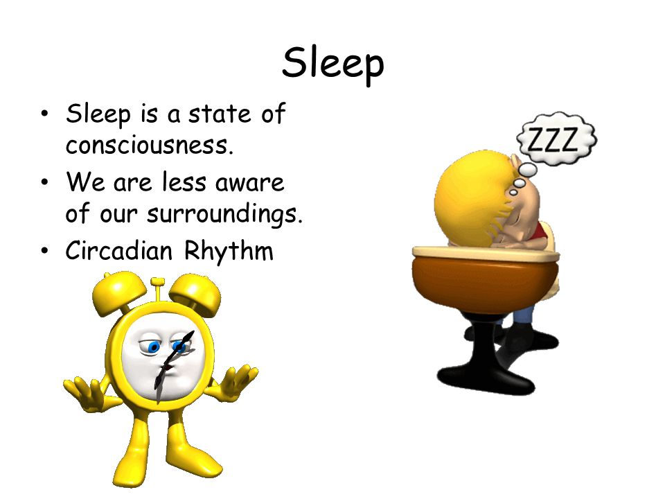 Sleep Sleep is a state of consciousness. We are less aware of our surroundings. Circadian Rhythm