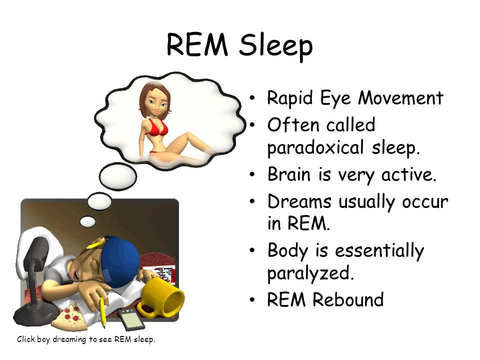 REM Sleep Rapid Eye Movement Often called paradoxical sleep. Brain is very active. Dreams usually occur in REM. Body is essentially paralyzed. REM Reb
