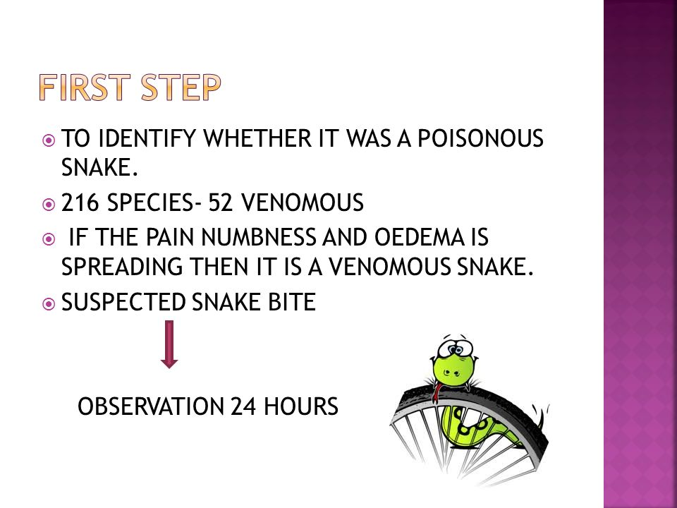 TO IDENTIFY WHETHER IT WAS A POISONOUS SNAKE. 216 SPECIES- 52 VENOMOUS IF THE PAIN NUMBNESS AND OEDEMA IS SPREADING THEN IT IS A VENOMOUS SNAKE. SUSPE
