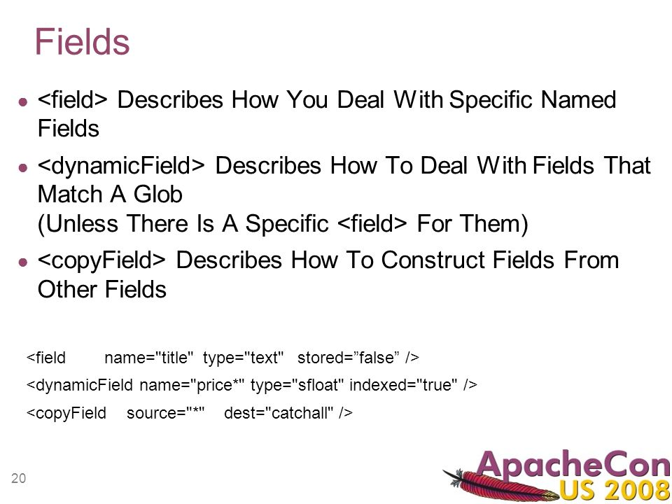 20 Fields Describes How You Deal With Specific Named Fields Describes How To Deal With Fields That Match A Glob (Unless There Is A Specific For Them)