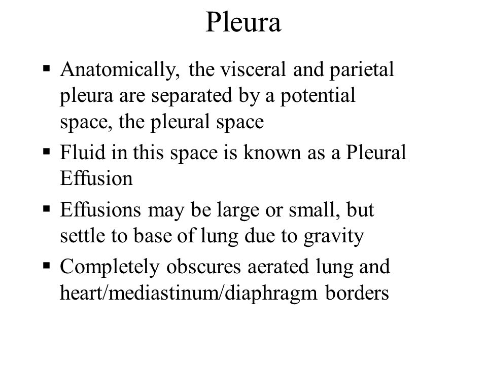 Pleura Anatomically, the visceral and parietal pleura are separated by a potential space, the pleural space Fluid in this space is known as a Pleural
