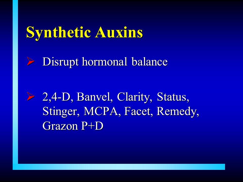 Synthetic Auxins Disrupt hormonal balance Disrupt hormonal balance 2,4-D, Banvel, Clarity, Status, Stinger, MCPA, Facet, Remedy, Grazon P+D 2,4-D, Ban