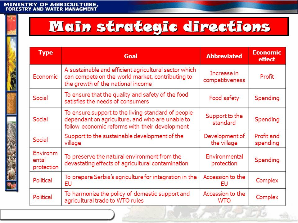 Main strategic directions Type GoalAbbreviated Economic effect Economic A sustainable and efficient agricultural sector which can compete on the world