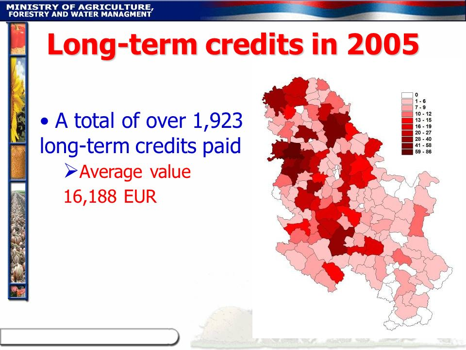 A total of over 1,923 long-term credits paid Average value 16,188 EUR Long-term credits in 2005
