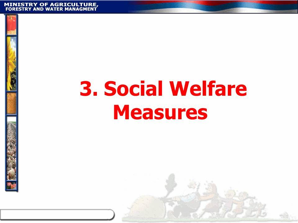 3. Social Welfare Measures
