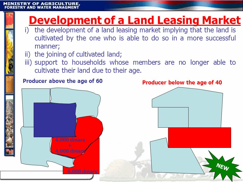 i)the development of a land leasing market implying that the land is cultivated by the one who is able to do so in a more successful manner; ii)the jo