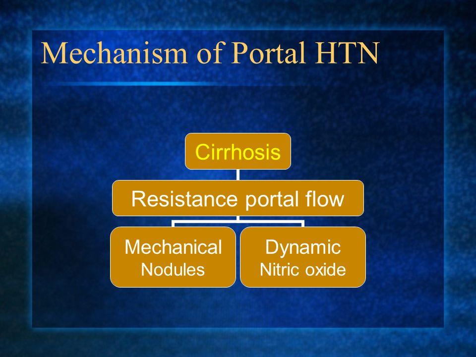 Mechanism of Portal HTN Cirrhosis Resistance portal flow Mechanical Nodules Dynamic Nitric oxide