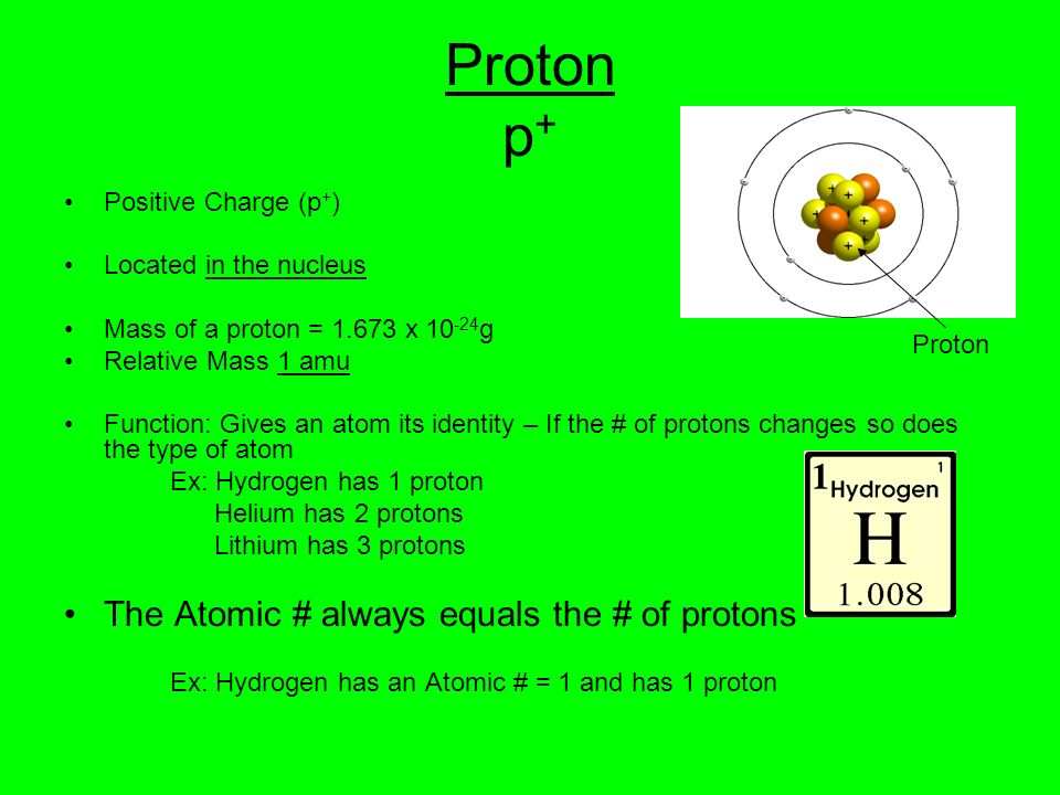 Proton p + Positive Charge (p + ) Located in the nucleus Mass of a proton = 1.673 x 10 -24 g Relative Mass 1 amu Function: Gives an atom its identity