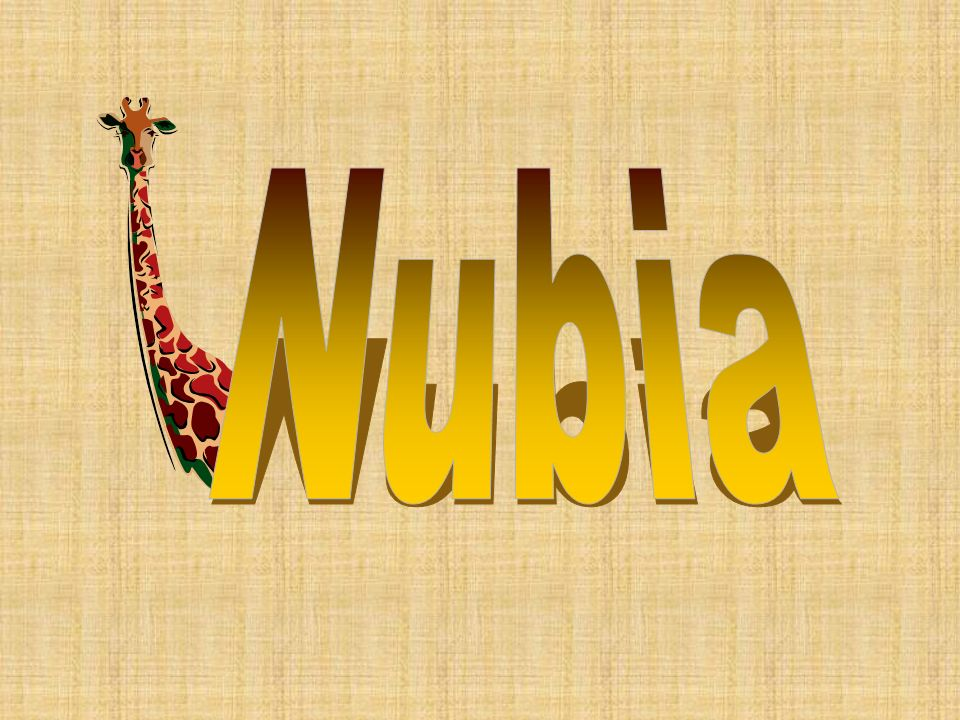 Nubia was a great civilization that developed along the Nile River south of Egypt.