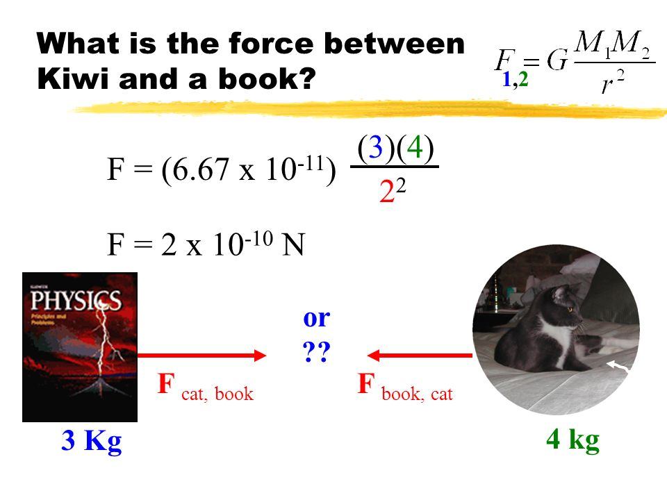 What is the force between Kiwi and a book? F = (6.67 x 10 -11 ) (3)(4)2 F = 2 x 10 -10 N F cat, book F book, cat or ?? 1,21,2 4 kg 3 Kg