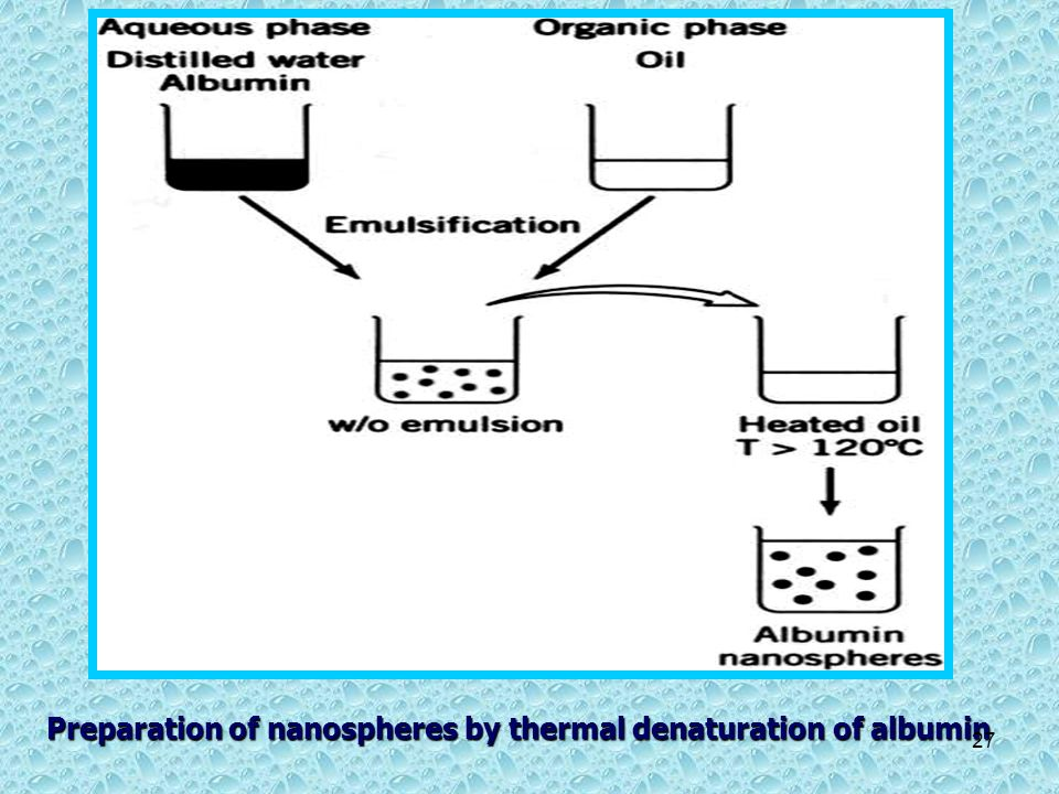 Preparation of nanospheres by thermal denaturation of albumin 27