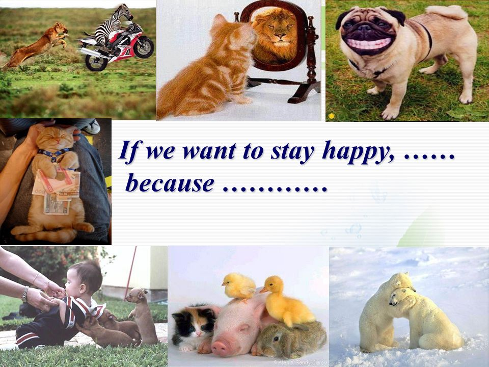 If we want to stay happy, …… because ………… because …………