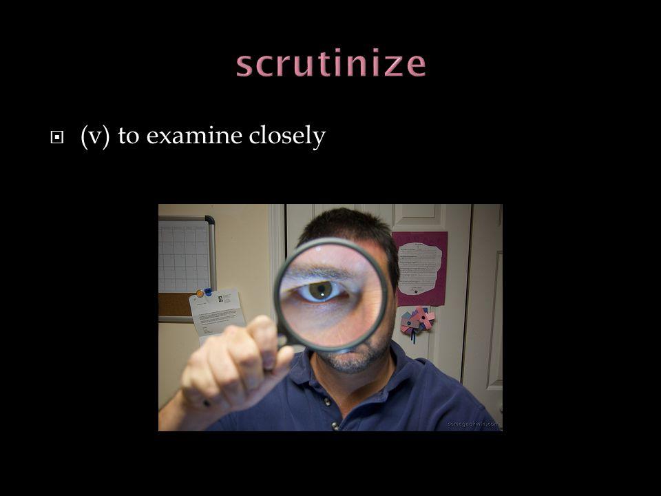 (v) to examine closely
