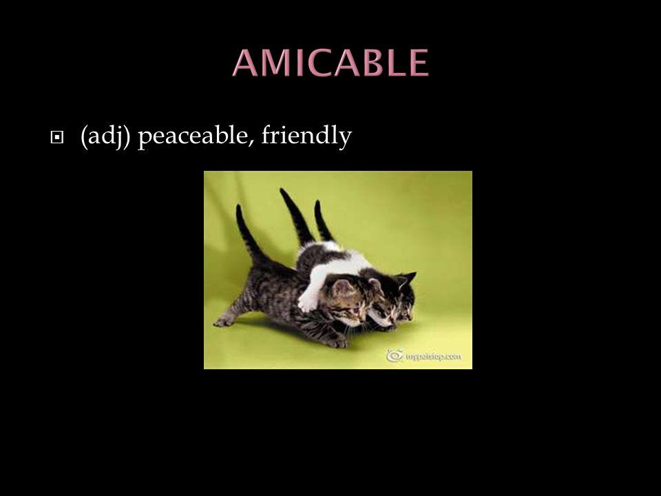 (adj) peaceable, friendly