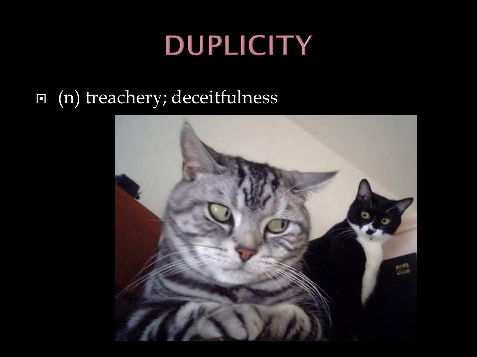 (n) treachery; deceitfulness