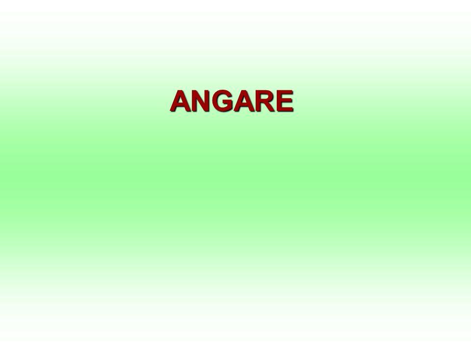 ANGARE