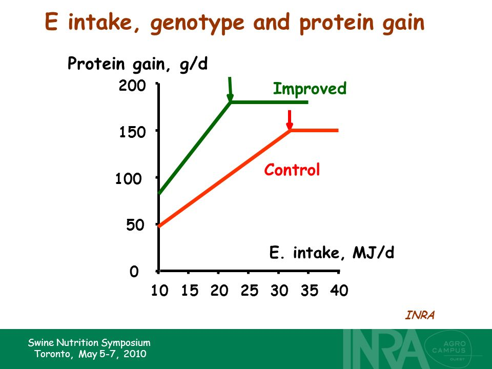 Swine Nutrition Symposium Toronto, May 5-7, 2010 10152025303540 0 50 100 150 200 E. intake, MJ/d Protein gain, g/d INRA E intake, genotype and protein