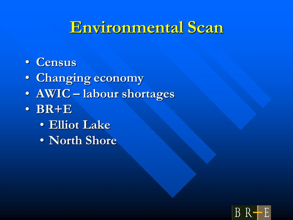 Environmental Scan CensusCensus Changing economyChanging economy AWIC – labour shortagesAWIC – labour shortages BR+EBR+E Elliot LakeElliot Lake North ShoreNorth Shore