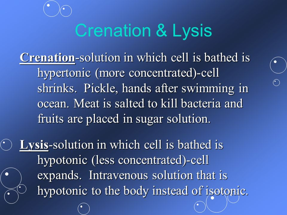 Crenation & Lysis Crenation-solution in which cell is bathed is hypertonic (more concentrated)-cell shrinks. Pickle, hands after swimming in ocean. Me