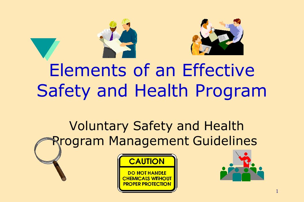 1 Elements of an Effective Safety and Health Program Voluntary Safety and Health Program Management Guidelines