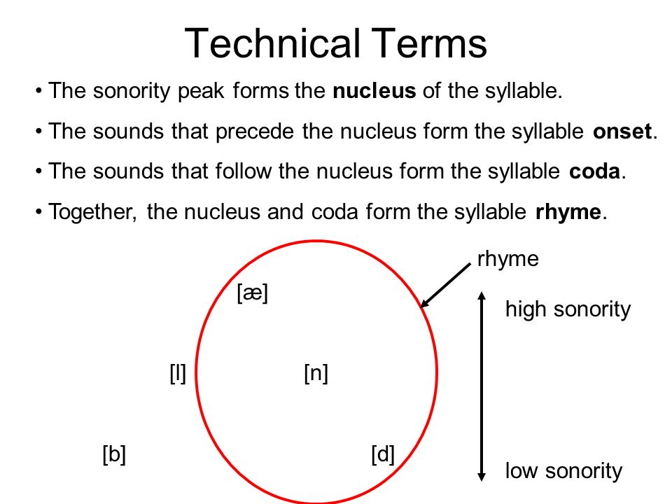 Technical Terms The sonority peak forms the nucleus of the syllable. The sounds that precede the nucleus form the syllable onset. The sounds that foll