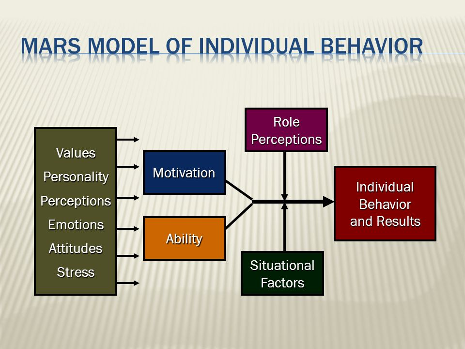 Individual Behavior and Results RolePerceptions SituationalFactors Motivation Ability ValuesPersonalityPerceptionsEmotionsAttitudesStress
