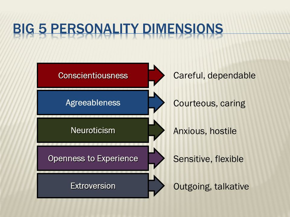 Outgoing, talkative Sensitive, flexible Careful, dependable Courteous, caring Anxious, hostile Extroversion Openness to Experience ConscientiousnessAg