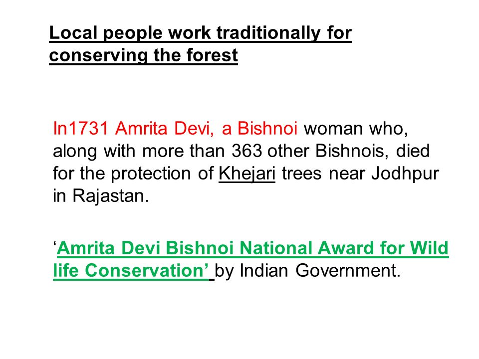 Local people work traditionally for conserving the forest In1731 Amrita Devi, a Bishnoi woman who, along with more than 363 other Bishnois, died for t