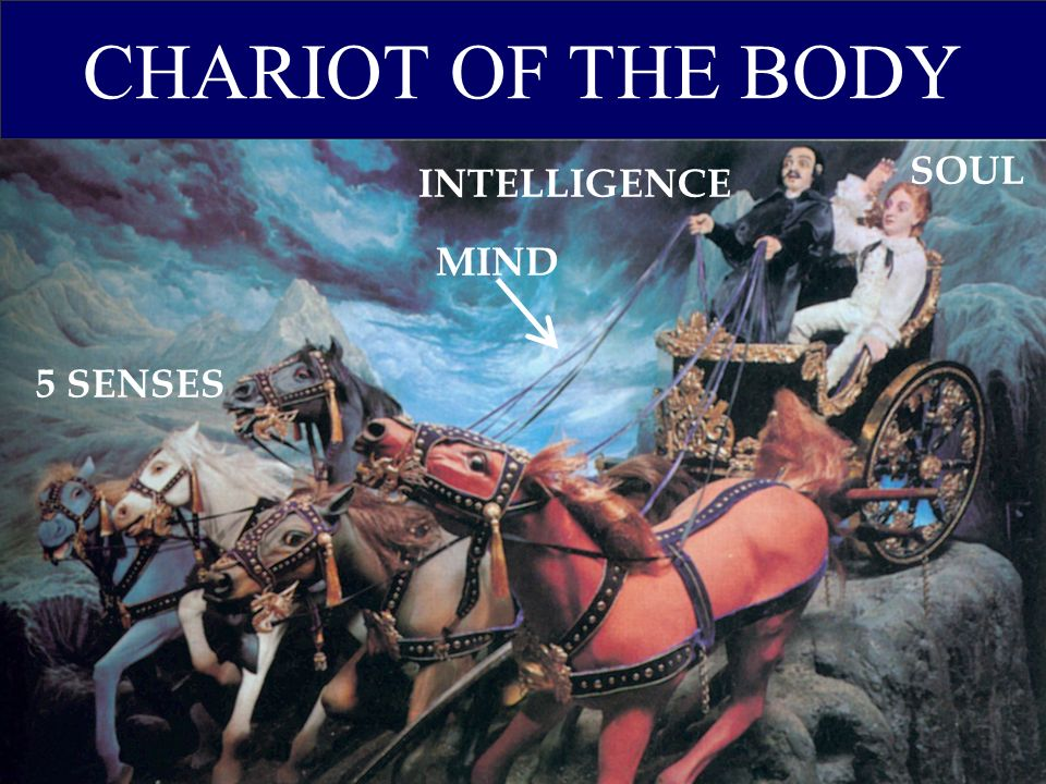 CHARIOT OF THE BODY 5 SENSES MIND INTELLIGENCE SOUL