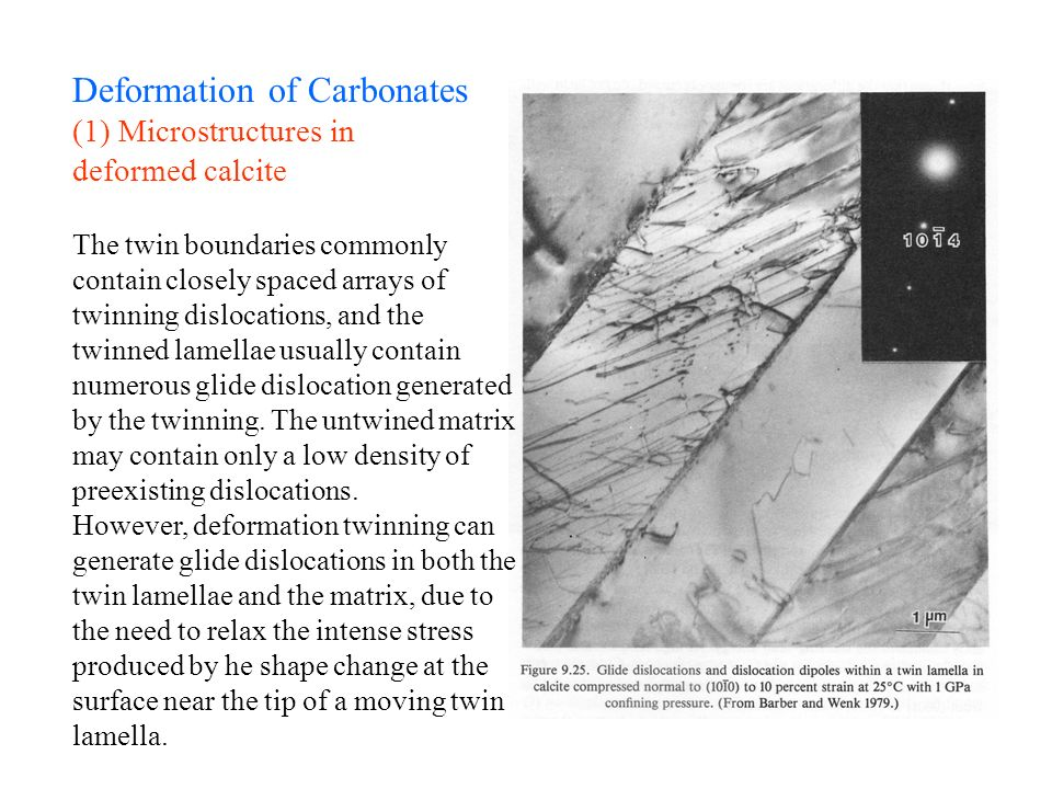 Deformation of Carbonates (1) Microstructures in deformed calcite The twin boundaries commonly contain closely spaced arrays of twinning dislocations,