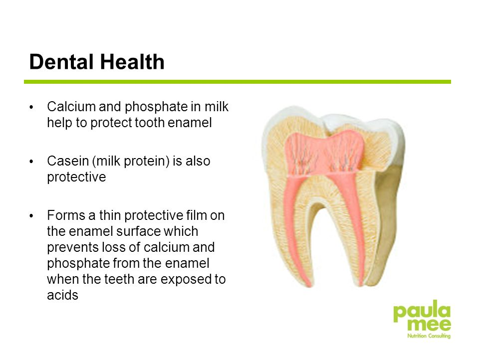 Dental Health Calcium and phosphate in milk help to protect tooth enamel Casein (milk protein) is also protective Forms a thin protective film on the