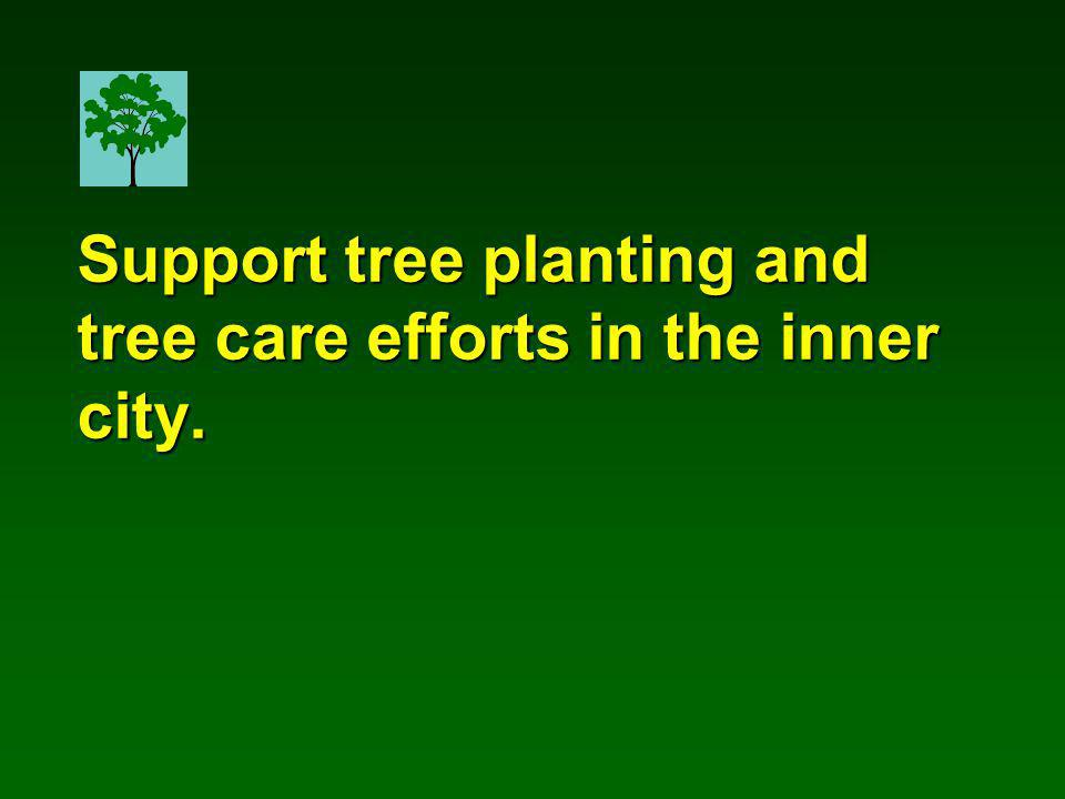 Support tree planting and tree care efforts in the inner city.