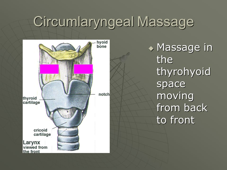 Circumlaryngeal Massage Massage in the thyrohyoid space moving from back to front Massage in the thyrohyoid space moving from back to front