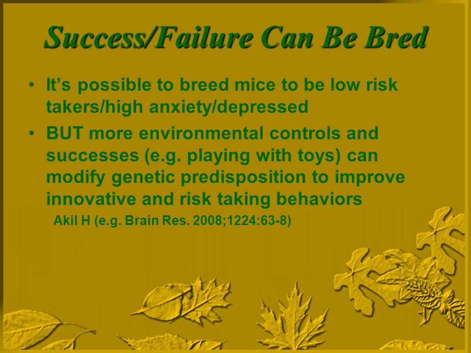 Success/Failure Can Be Bred Its possible to breed mice to be low risk takers/high anxiety/depressed BUT more environmental controls and successes (e.g.