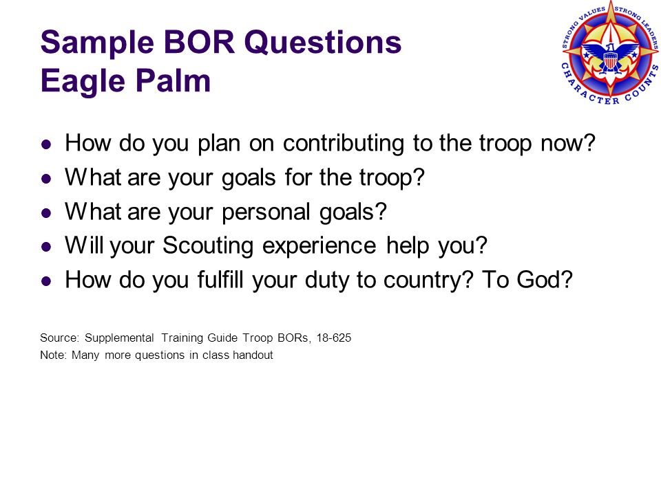 Sample BOR Questions Eagle Palm How do you plan on contributing to the troop now? What are your goals for the troop? What are your personal goals? Wil