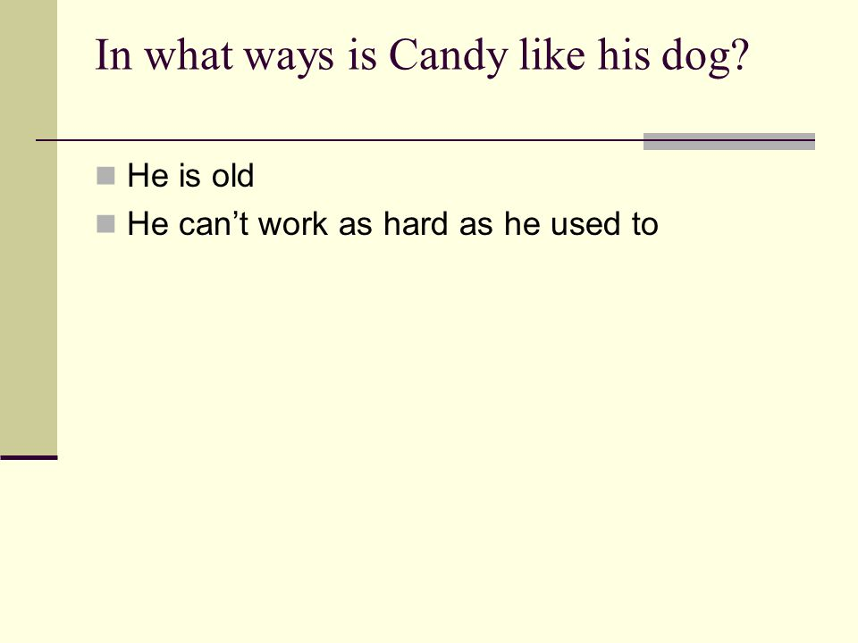 In what ways is Candy like his dog? He is old He cant work as hard as he used to