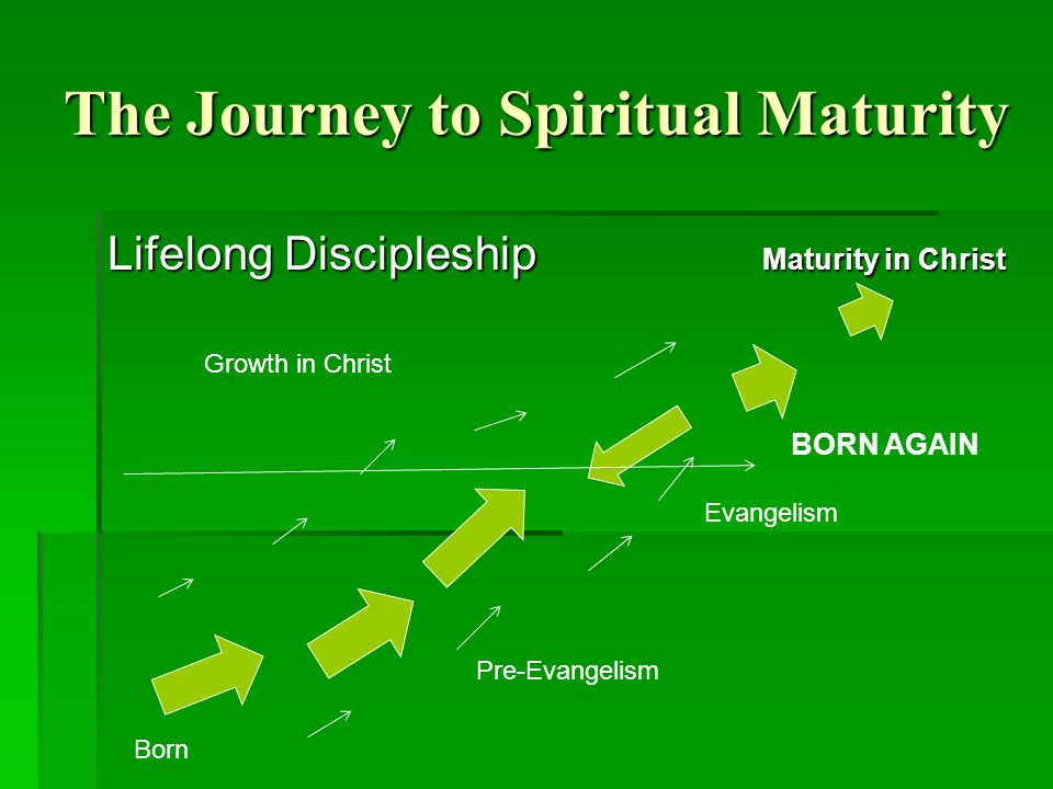 The Journey to Spiritual Maturity Lifelong Discipleship Maturity in Christ Born Pre-Evangelism Evangelism BORN AGAIN Growth in Christ