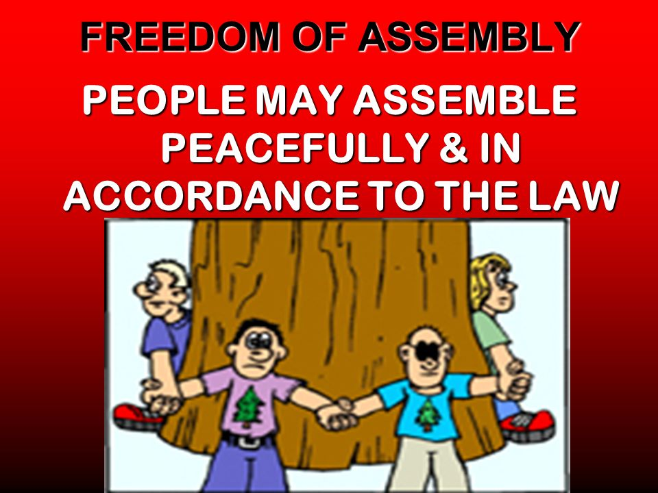FREEDOM OF ASSEMBLY PEOPLE MAY ASSEMBLE PEACEFULLY & IN ACCORDANCE TO THE LAW