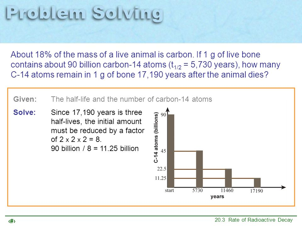 16 20.3 Rate of Radioactive Decay About 18% of the mass of a live animal is carbon. If 1 g of live bone contains about 90 billion carbon-14 atoms (t 1