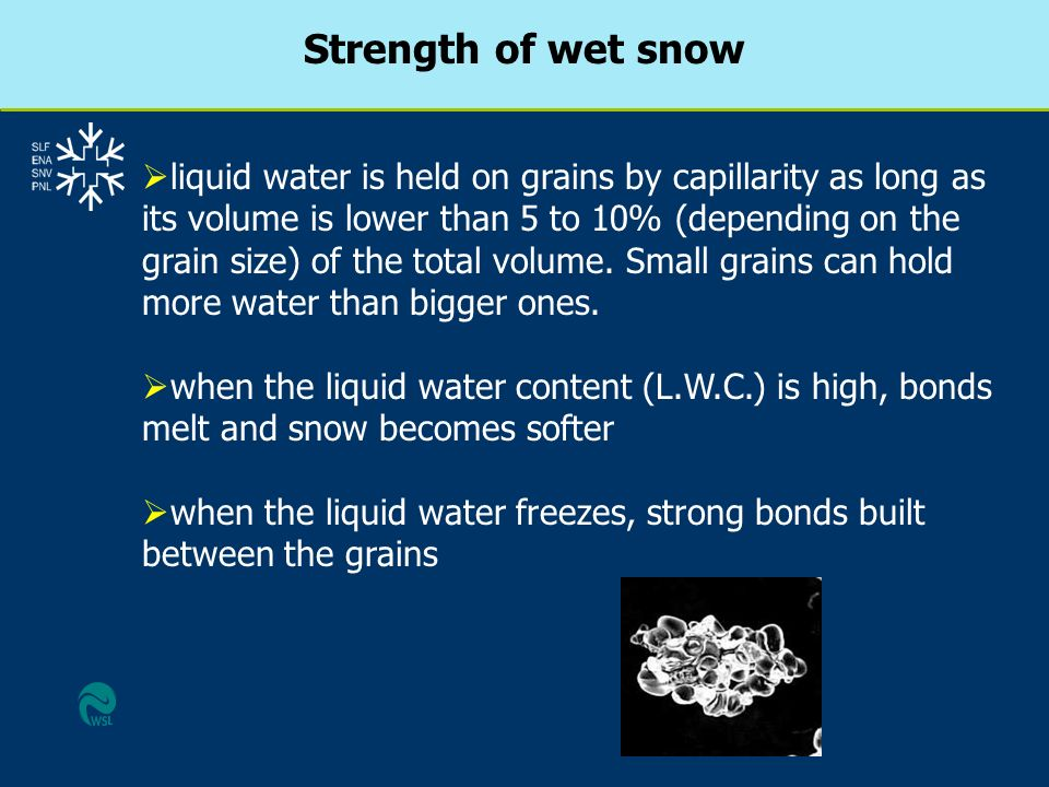 Strength of wet snow liquid water is held on grains by capillarity as long as its volume is lower than 5 to 10% (depending on the grain size) of the t