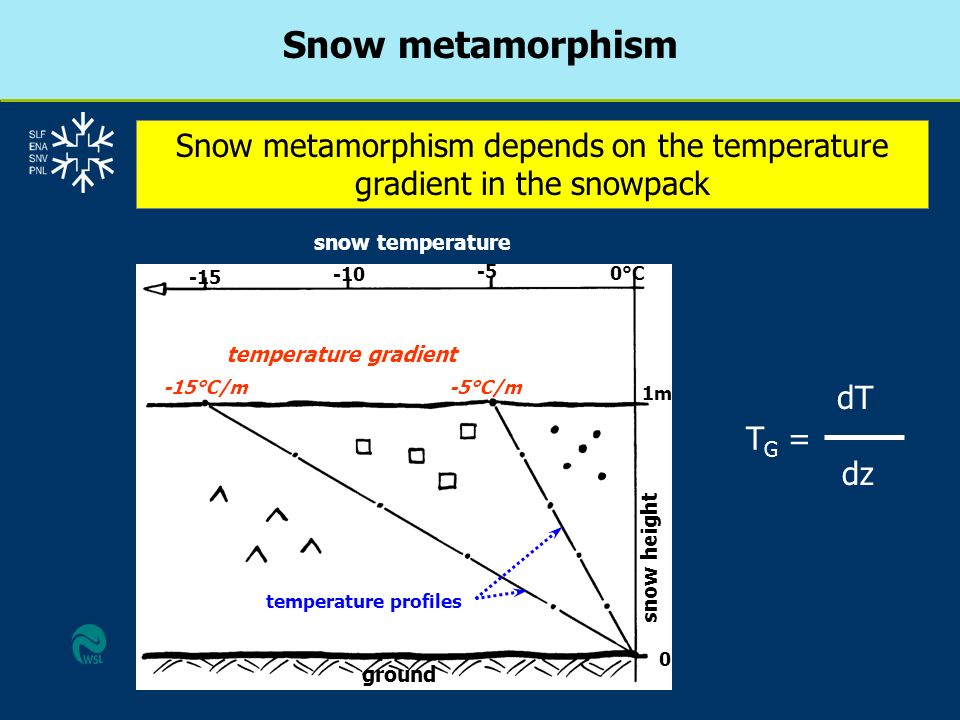 Snow metamorphism Snow metamorphism depends on the temperature gradient in the snowpack snow temperature temperature gradient ground snow height -15 -