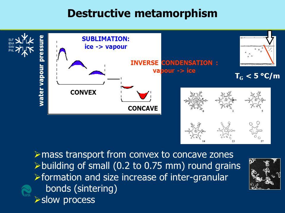 Destructive metamorphism SUBLIMATION: ice -> vapour INVERSE CONDENSATION : vapour -> ice CONVEX CONCAVE water vapour pressure mass transport from conv