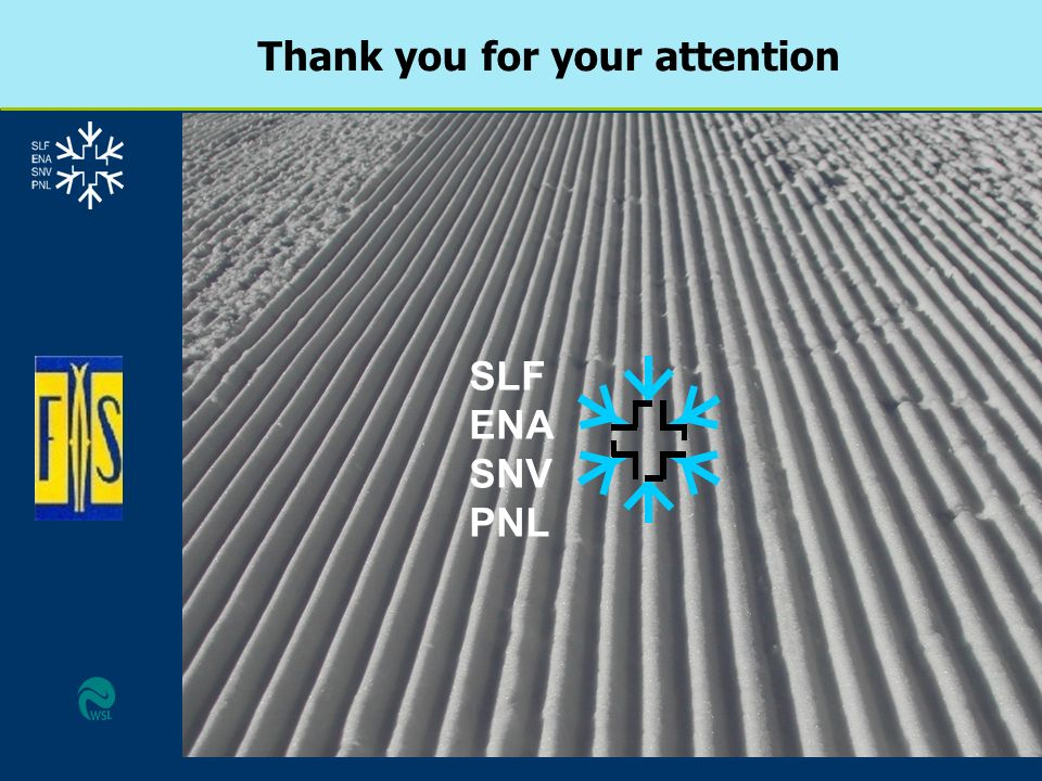Thank you for your attention SLF ENA SNV PNL