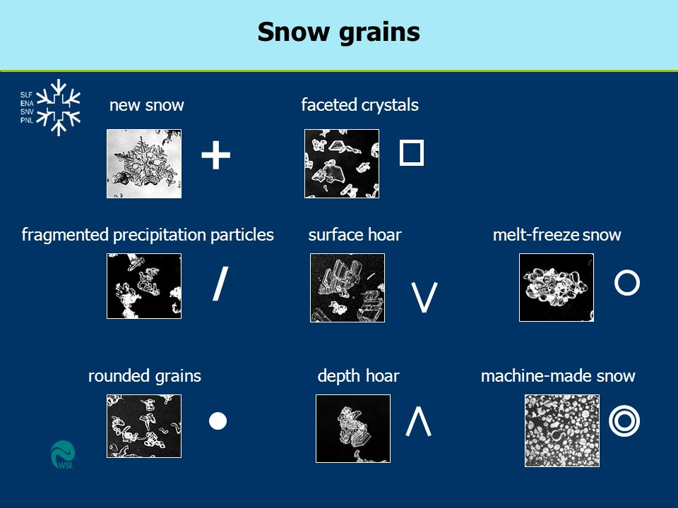 Snow grains / fragmented precipitation particles rounded grains surface hoar faceted crystals melt-freeze snow depth hoar + new snow machine-made snow