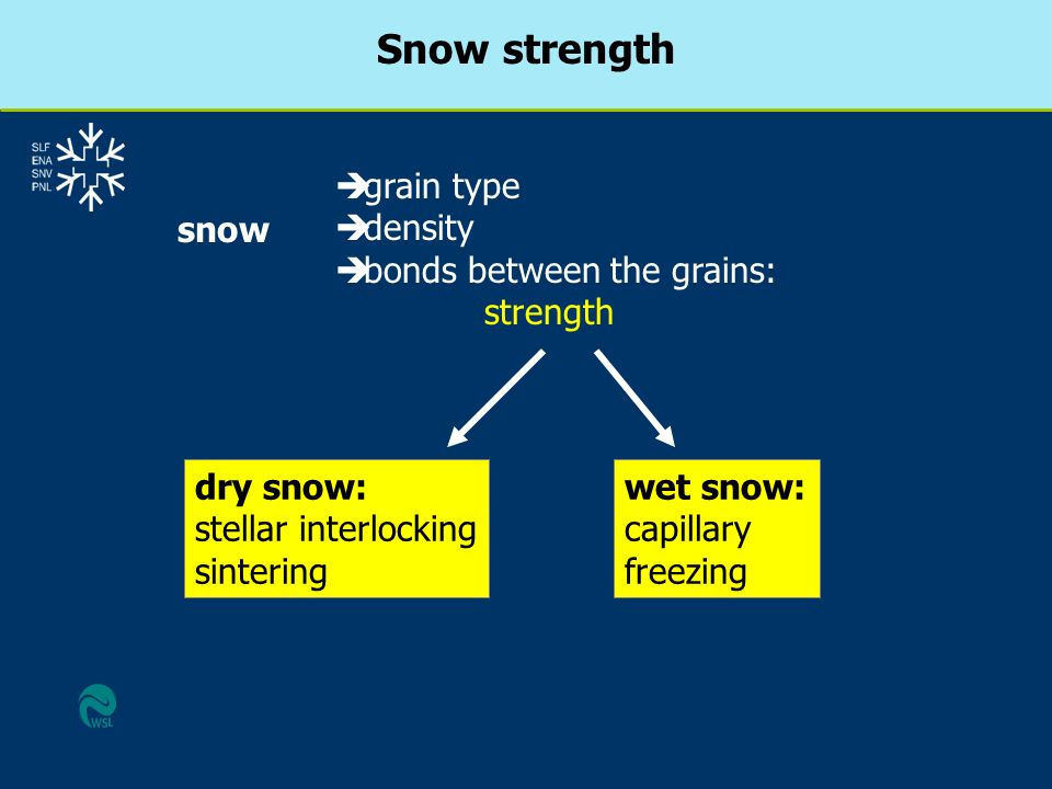 Snow strength è grain type è density è bonds between the grains: strength snow dry snow: stellar interlocking sintering wet snow: capillary freezing