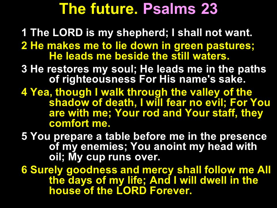 The future. Psalms 23 1 The LORD is my shepherd; I shall not want. 2 He makes me to lie down in green pastures; He leads me beside the still waters. 3