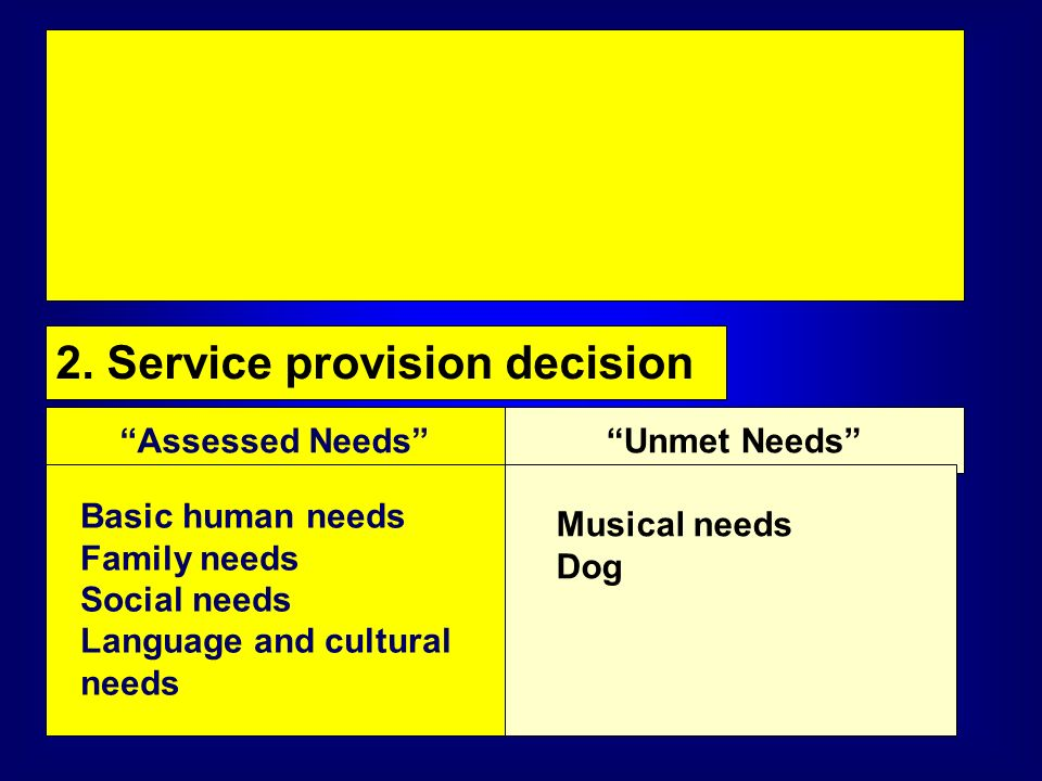 2. Service provision decision Assessed NeedsUnmet Needs Basic human needs Family needs Social needs Language and cultural needs Musical needs Dog