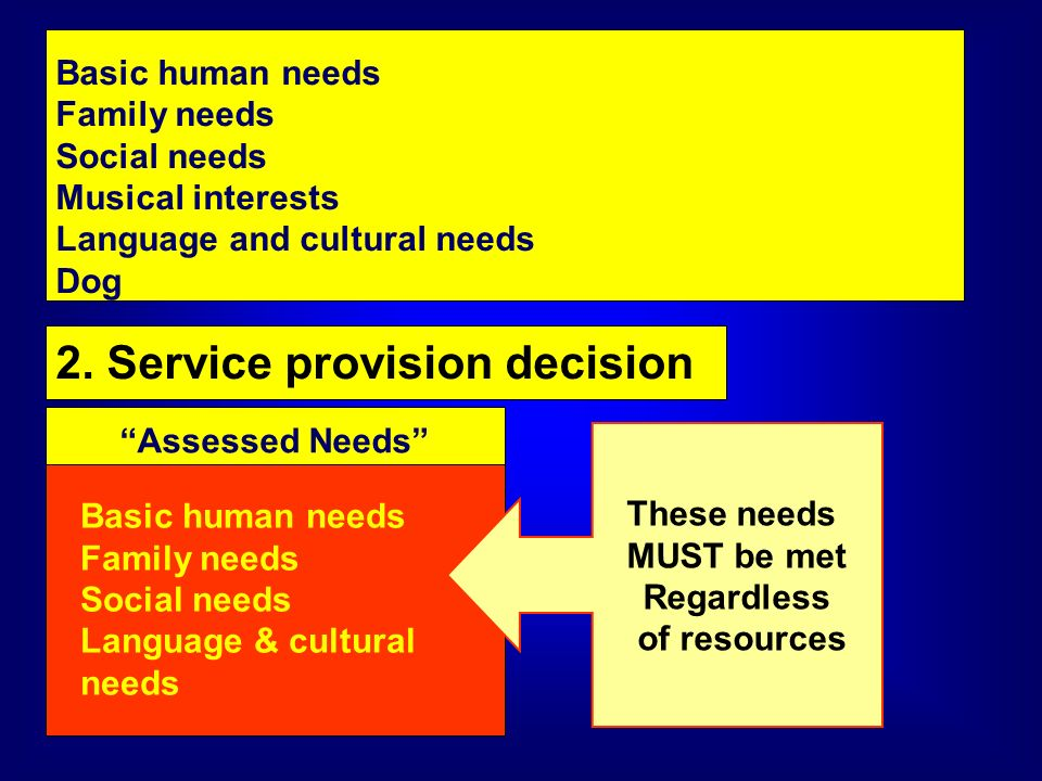 Basic human needs Family needs Social needs Musical interests Language and cultural needs Dog 2. Service provision decision Assessed Needs Basic human