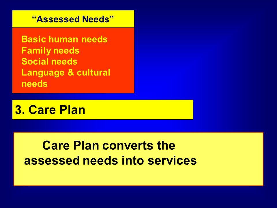 Assessed Needs Basic human needs Family needs Social needs Language & cultural needs 3.